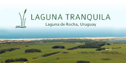 Laguna Tranquila Rocha Uruguay Real Estate Development